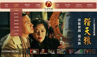 百年中视文化传播网站